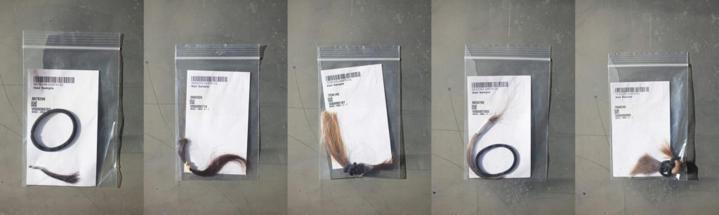 Donor hair samples are stored in binders at the BWH/Harvard Cohorts Biorepository in Boston, Mass.