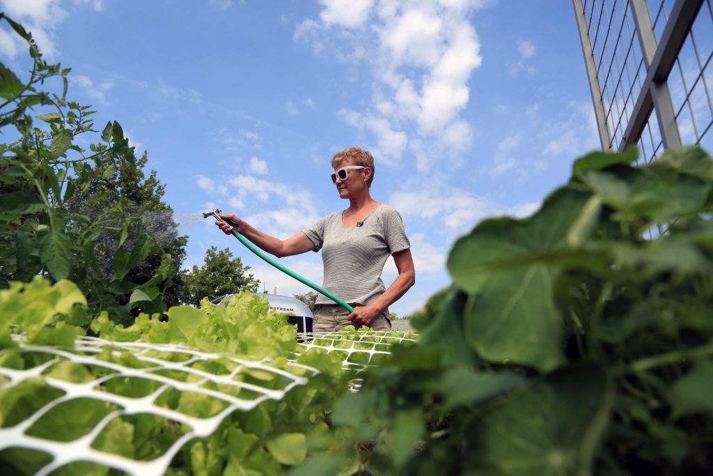 Linnea Olson in her vegetable garden in Lowell, Mass.
