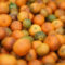 "FORT PIERCE, FL - MAY 13:  Tangerines are seen in a bin as the citrus industry tries to find a cure for the disease ""citrus greening"" that is caused by the Asian citrus psyllid, an insect, that carries the bacterium, ""citrus greening"" or huanglongbing, from tree to tree on May 13, 2013 in Fort Pierce, Florida. There is no known cure for the disease that forms when the insect deposits the bacterium on citrus trees causing the leaves on the tree to turn yellow the roots to decay and bitter fruits fall off the dying branches prematurely. Steps continue to be taken to try and combat the disease but none have stopped the attack on the citrus business as it spreads from Florida to other citrus producing states.  (Photo by Joe Raedle/Getty Images)"