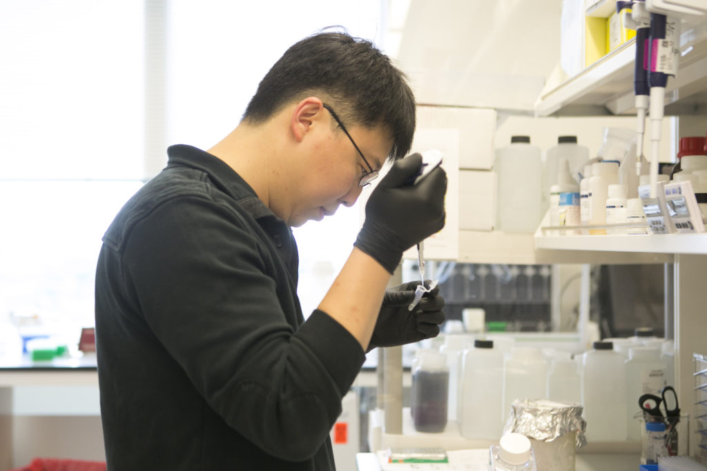 Feng Zhang runs an experiment with DNA and RNA in his lab.