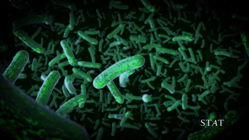 How gut microbes may hold clues to tomorrow's medicines