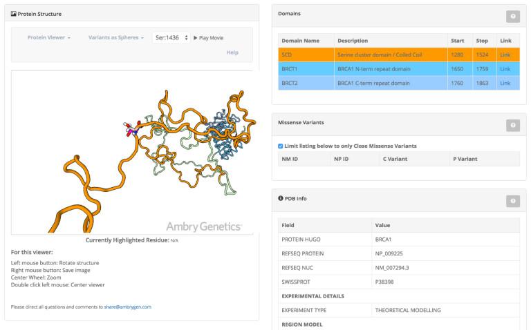 AMBRY GENETICS