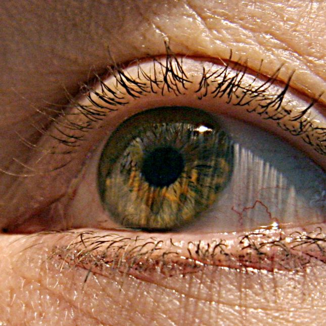 Contact Lenses May Change The Bacterial Gardens Of Your Eye