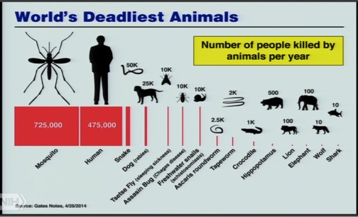 worlds-deadliest-animals