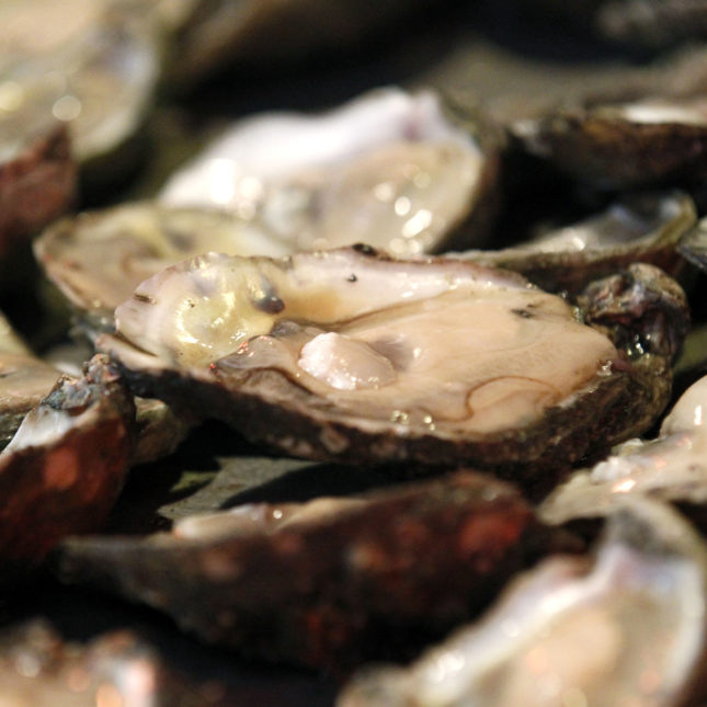 Holiday Oysters