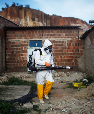 Zika Eradication Brazil