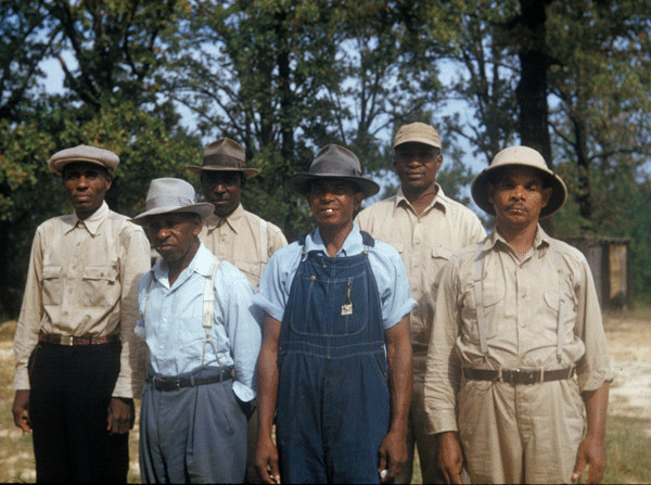 Has anyone ever heard of the Tuskegee Incident?