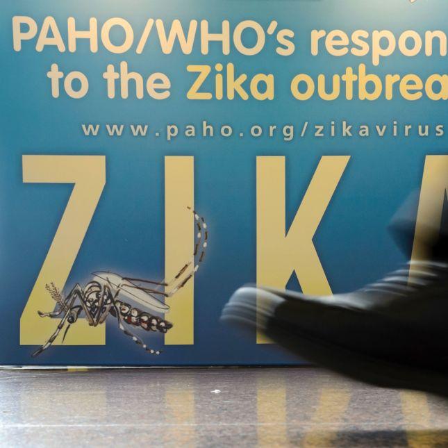 Zika Europe