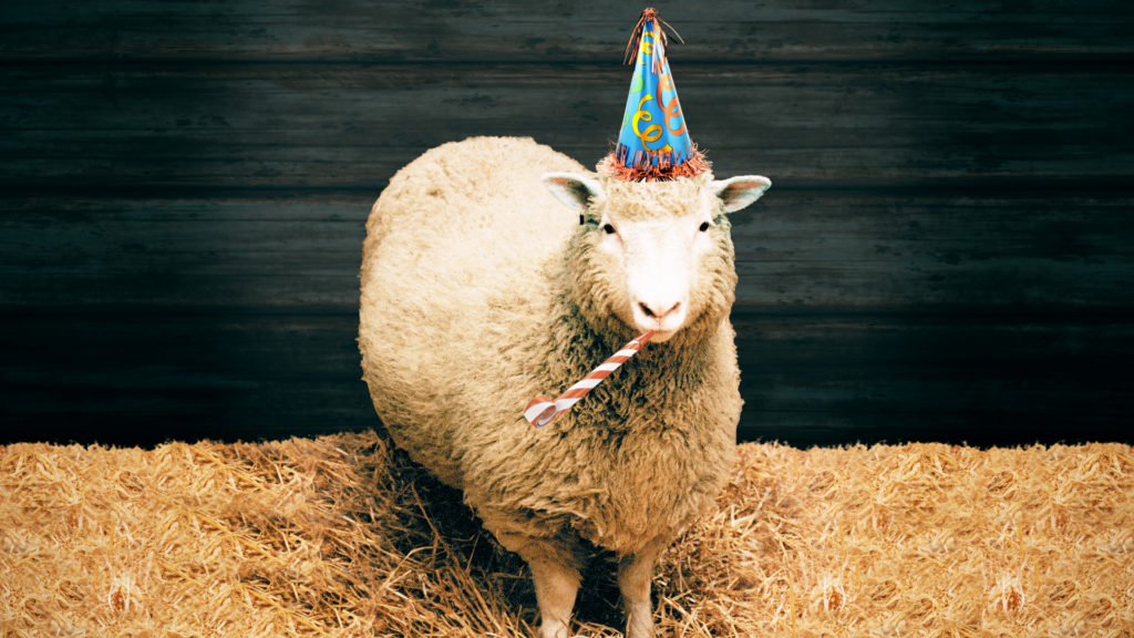 it s been 20 years since dolly the sheep where s my clone