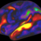 Mapping Human Cortex