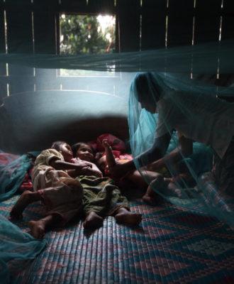 Mosquitoes bed net