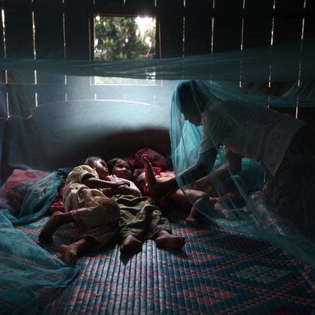 Mosquitoes bed net