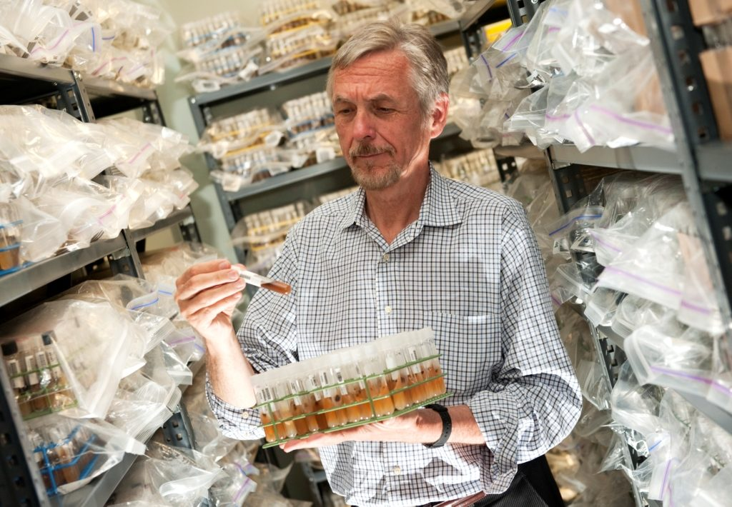 Cedric Pearce stands in his culture room surrounded by a quarter of a million test tubes filled with fungi. Photo credit: David Wilson and Chris English of the University of North Carolina, Greenboro