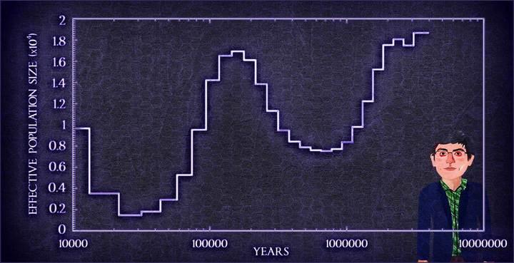 GoG graph