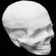 Hyperelastic Bone