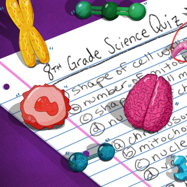 Take our quiz: Can you out-science an 8th grader?