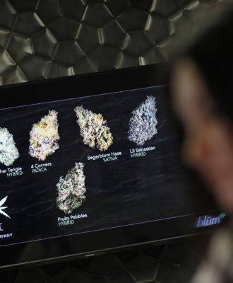 Marijuana Las Vegas
