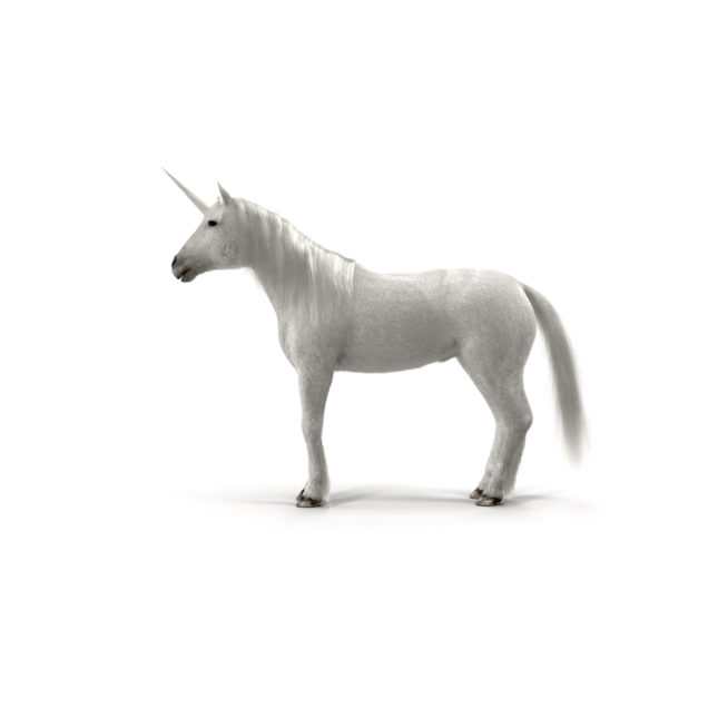 Healthcare Unicorn