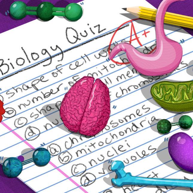 Biology Quiz