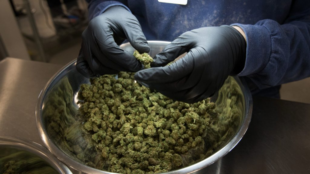 In this new era for marijuana, let's examine its medical uses