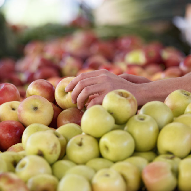 EPA Pesticides Restrictions
