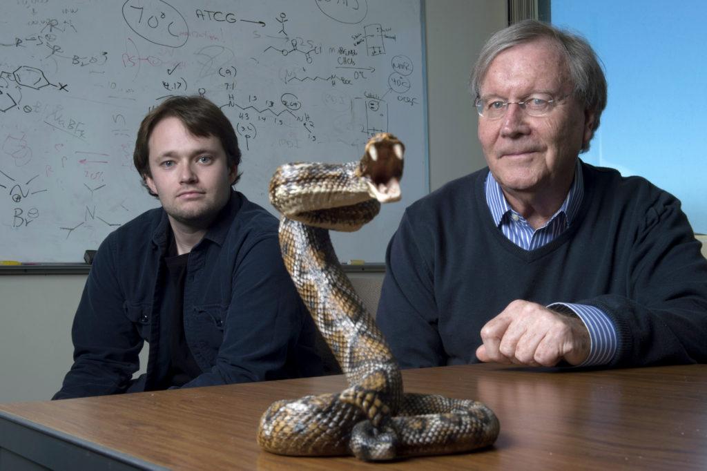 Snake venom chemistry