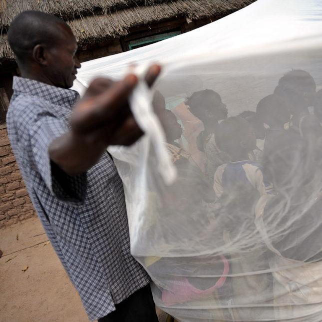 Malaria Community