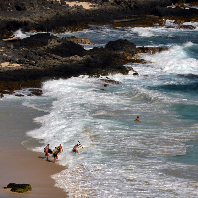 Hawaii Worried by Outbreak of Brain-invading Parasites