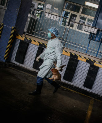 H7N9 bird flu - China