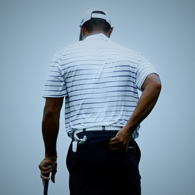 Tiger woods photo illo