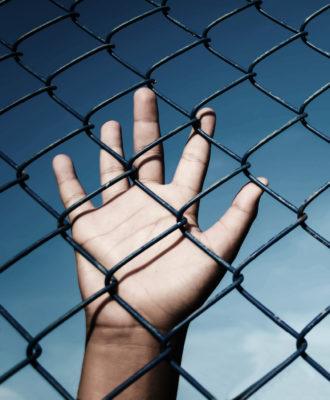 Boy fence