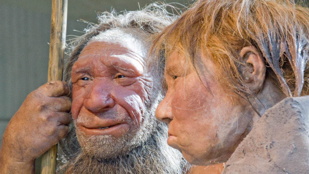 New Neanderthal ancestor is introduced by scientists