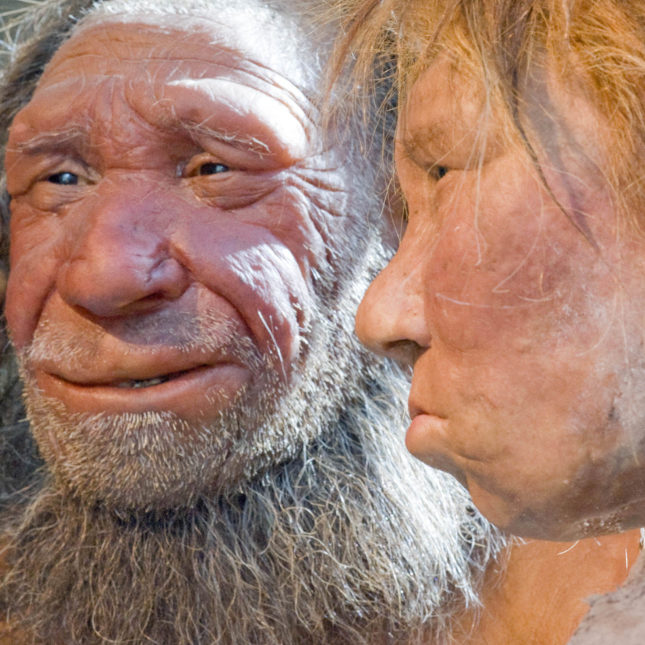 Our sleep patterns, mood and smoking habits are influenced by Neanderthal DNA