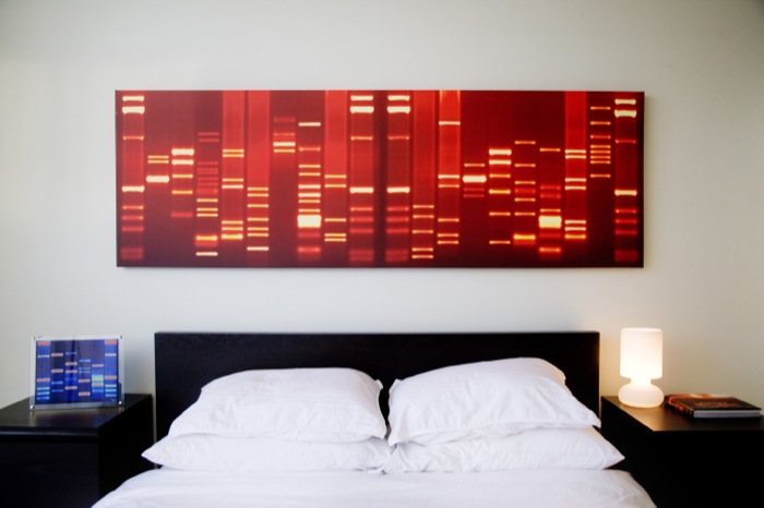 DNA portrait