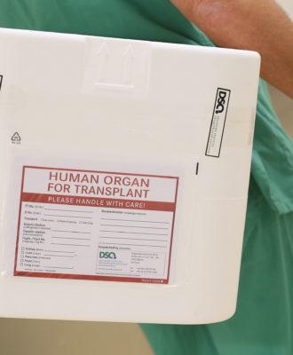 Organ Transplant System