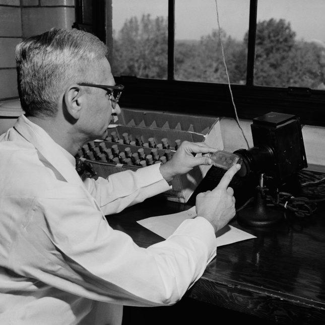 Albert Sabin 1956