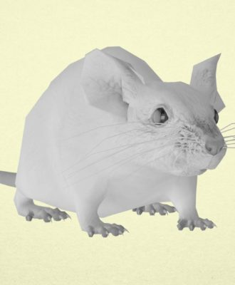 Optogenetics mouse still
