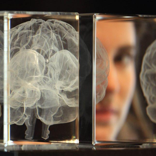 Artificial intelligence FDA