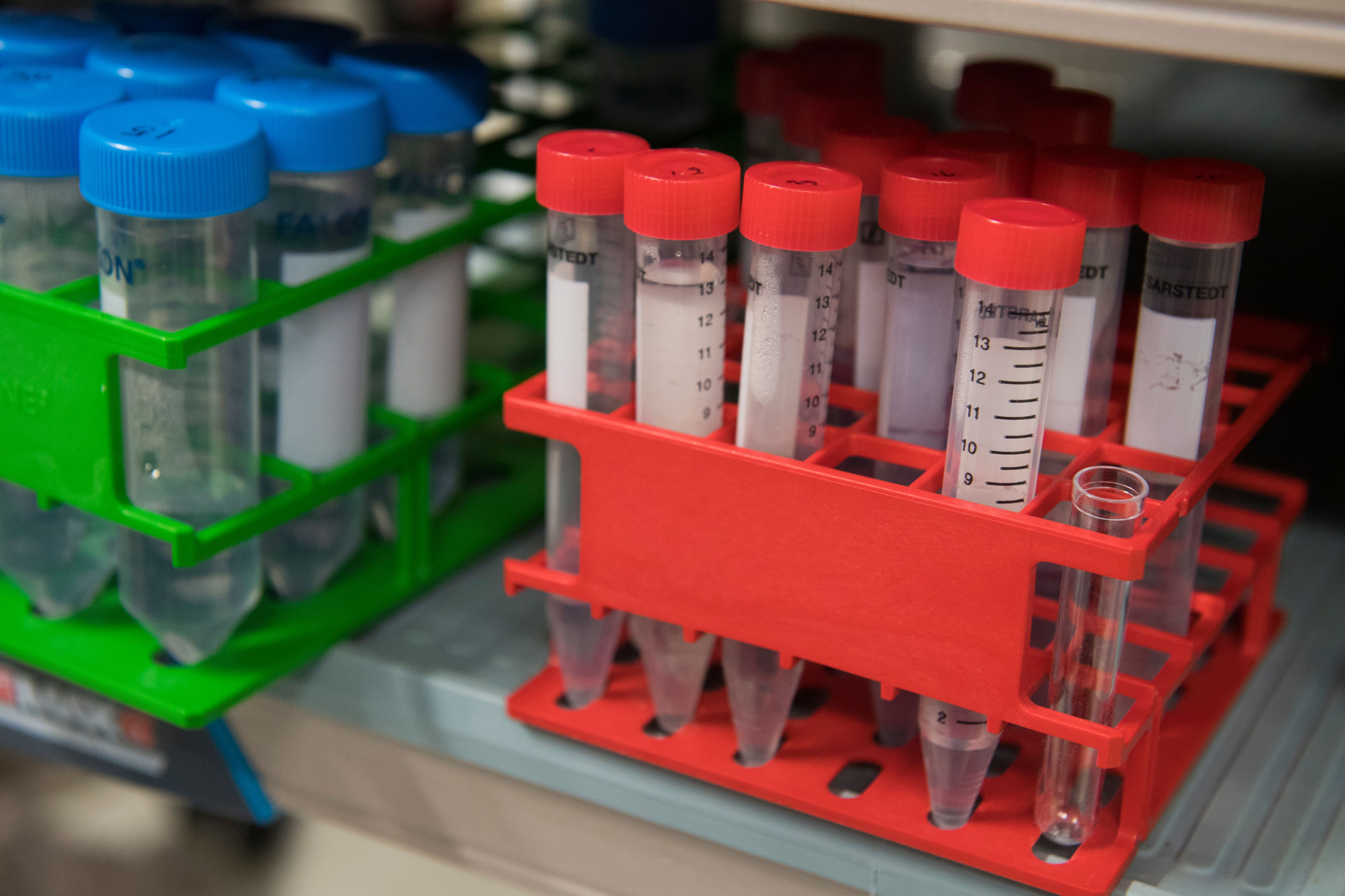Biomarkers provide a bridge to the next frontier in immuno-oncology