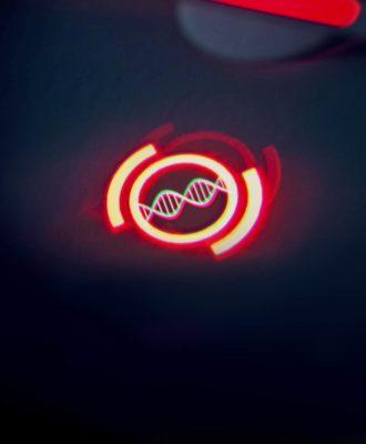 p53 CRISPR illo