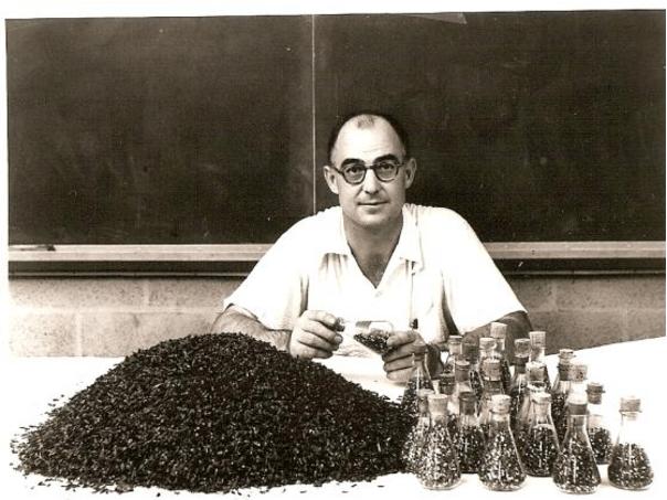 Professor William D McElroy.