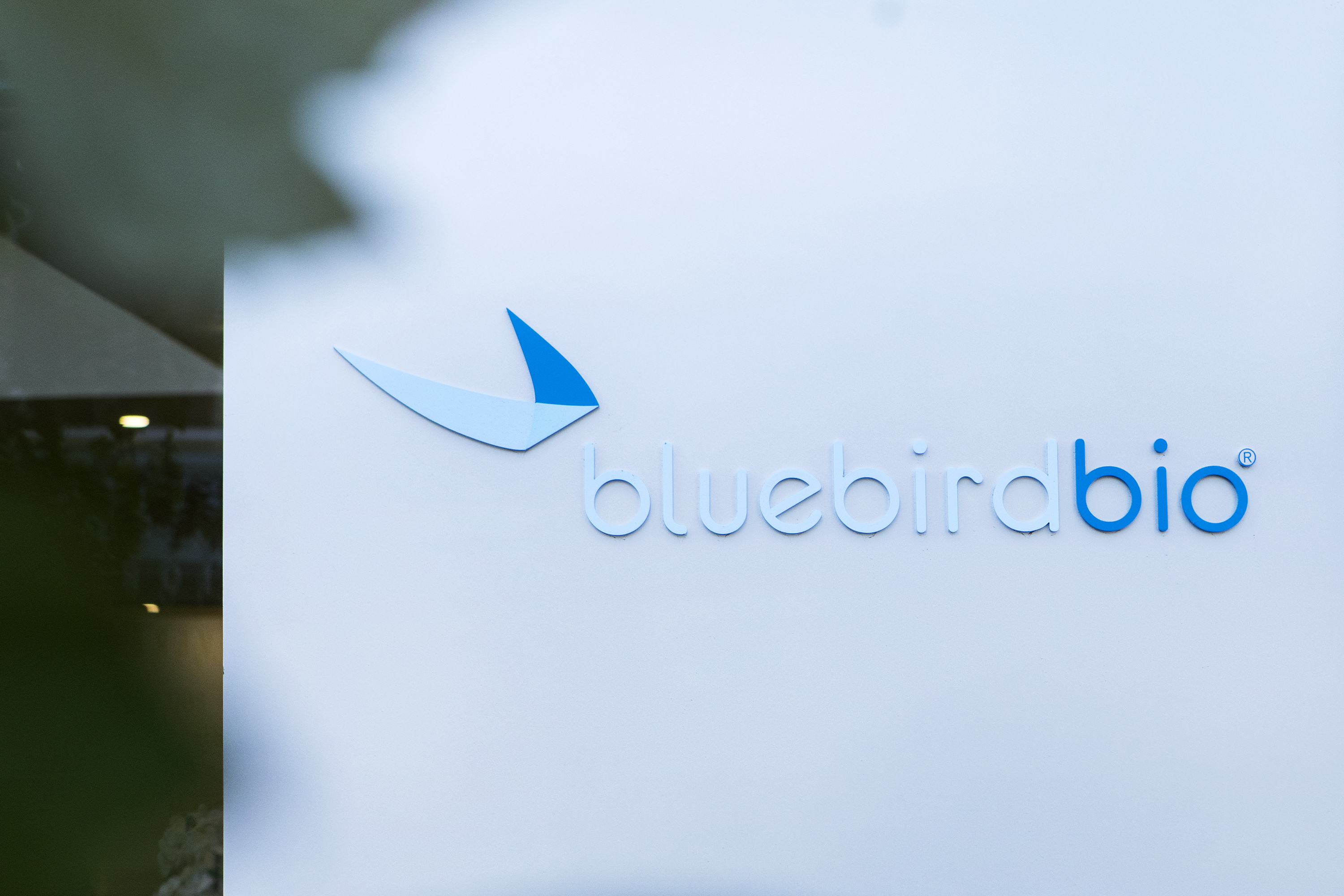 Why is Bluebird sitting on results of a CAR-T drug critical
