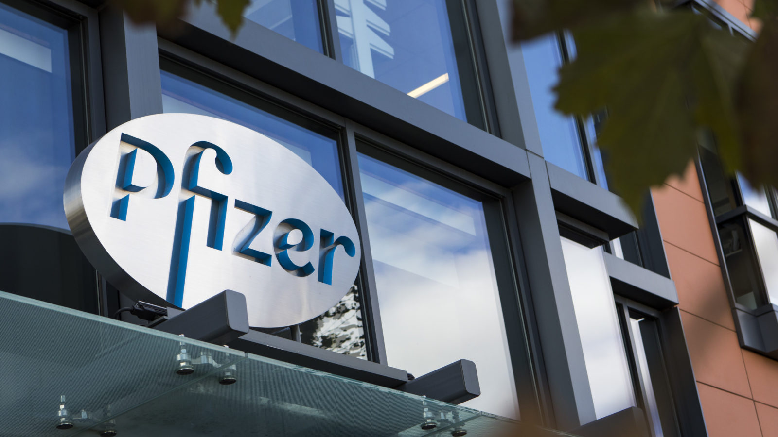 Pfizer says coronavirus drug could enter testing by fall