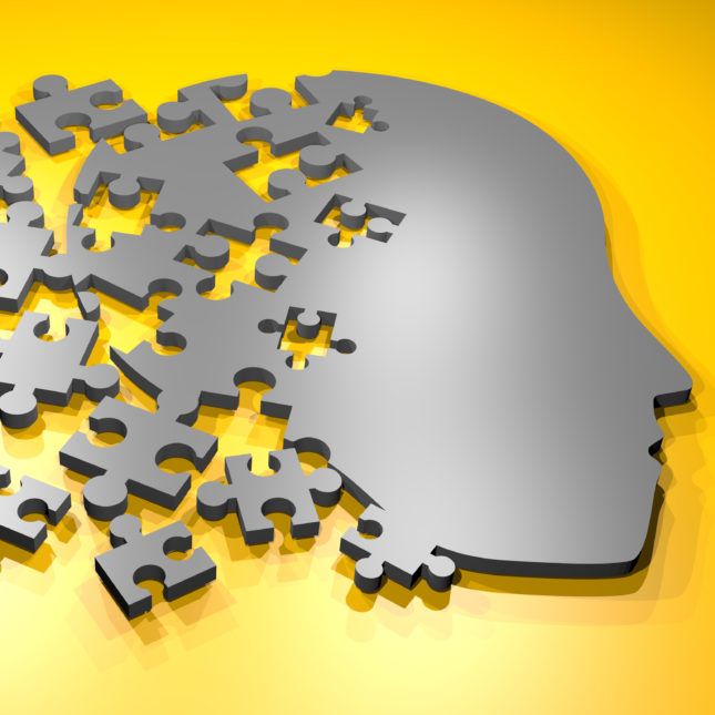 Brain is a puzzle