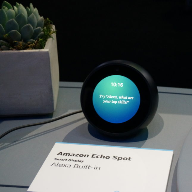 Alexa - what are your skills