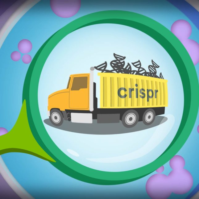 CRISPR delivery illustration