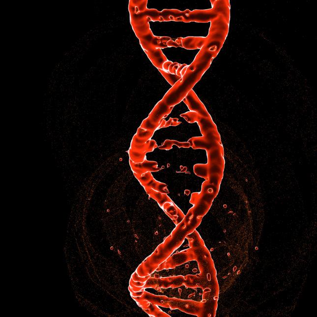 DNA strand repair