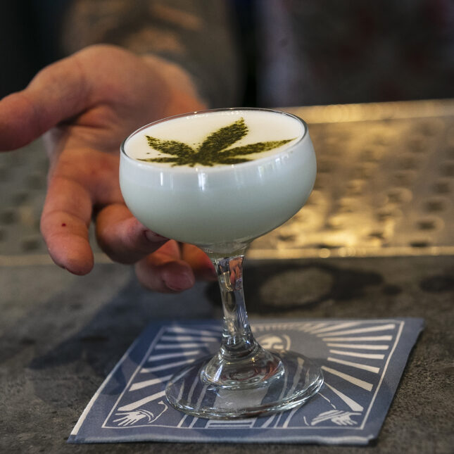 CBD cocktail