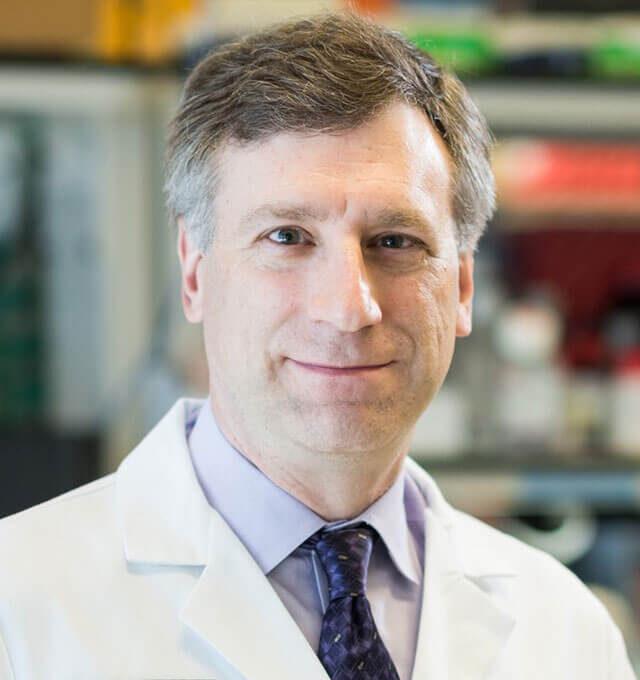 Jason Bock, Ph.D.