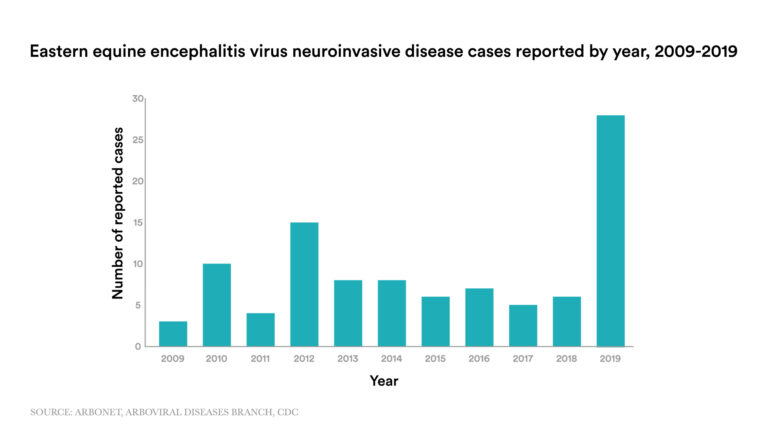 What to know about EEE, a mosquito-borne virus on the rise